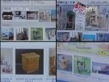 《看见》 20131220 东风村淘宝记
