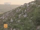 [科技苑]乱石山上的核桃林(20131220)