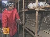 [农广天地]黑木耳袋料栽培技术(20140120)