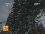 [农广天地]走进休闲农业――北方冬季民俗村(20140210)