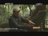 """黄文清养鳄鱼生财有道,""""鳄三代""""的两栖爬行帝国(上)"""