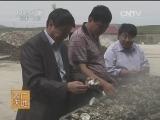 牡蛎加工技术农广天地,牡蛎罐头的加工技术