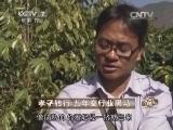 许正雄咖啡致富经,孝子转行 五年变行业黑马