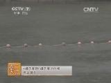 养鱼技术农广天地,松荷鲤养殖技术(20140326)