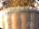 XM专题策划_《舌尖上的中国2》30秒宣传片一 00:00:34
