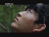 [舌尖上的中国 第二季]藏族小伙高空采蜜
