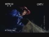 [舌尖上的中国 第二季]渔民杨世橹渔猎生活