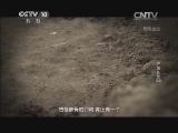 [探索发现]浐灞长歌 第四集 生生不息 西安灞河狄寨村惊现汉代熊猫头骨
