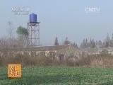 [农广天地]苏钟猪养殖技术(20140610)