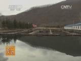 [农广天地]细鳞鱼养殖技术(20140617)