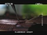 《探索发现》 20140622 手艺第四季——玲珑宫苑