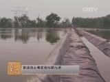 [农广天地]乌苏里拟�养殖技术(20140629)