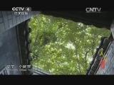 《寻找最美花园》 20140712 可园:百年名园 岭南精华
