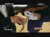 [生财有道]蓝孔雀飞出百万财(20140714)