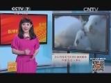 [科技苑]兔毛里藏着大玄机(20140729)