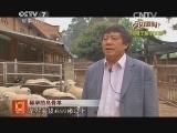 [科技苑]稀罕的乌骨羊(20140815)