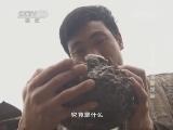 《地理中国》 20141002 江山多娇-乌蒙探秘