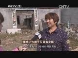 申浩养牛致富经,裸婚小伙的千万富翁之旅(20141204)
