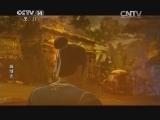 [动画大放映]《戚继光》 第11集 新河之围(上)
