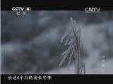《 神农架》 第二集 生生不息 00:23:05