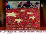 """湖南:农作物拼""""国旗""""迎国庆"""