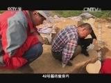 [探索发现]2015考古进行时之铜都探秘 梅雨季节逼近
