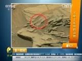 看天下 火星上发现的动物