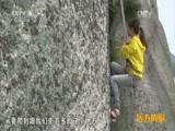 [远方的家]特别节目:悬崖绝壁上的采药人