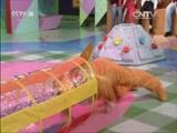 [七巧板]亲子游戏:小蜗牛运树叶
