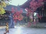 【影视聚焦】电视剧《新圆月弯刀》 张智尧杨雪打造纯正武侠