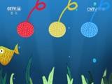 [小小智慧树]跳跳盒:红黄蓝