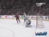 [NHL]常规赛:坦帕湾闪电VS明尼苏达狂野 加时赛