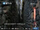 新春踏青指南 闽南通 2017.02.12 - 厦门卫视 00:25:16