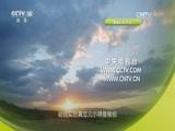 节气——时间里的中国智慧(四)炎蒸三伏 00:36:31