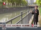 上海:徐汇打造3.3公里樱花大道