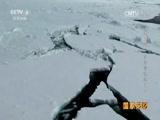 20170524 《征战南极》系列 第三集