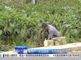 厦视新闻 2017.6.5 - 厦门电视台 00:24:44