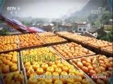 《辉煌中国》第三集:2020年培育1000个特色小镇 00:00:47