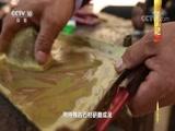 《中国影像方志》 第73集 安徽蒙城篇 00:39:17