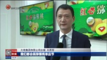 [贵州新闻联播]六盘水红心猕猴桃进入东北市场