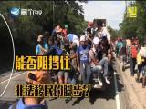 """移民之国 开始""""反移民""""? 两岸直航 2018.10.31 - 厦门卫视 00:30:03"""