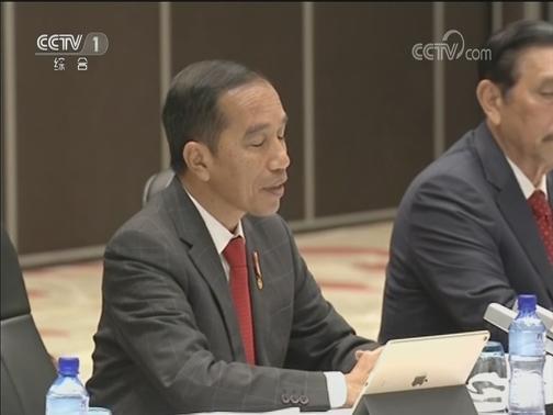 [视频]习近平会见印度尼西亚总统