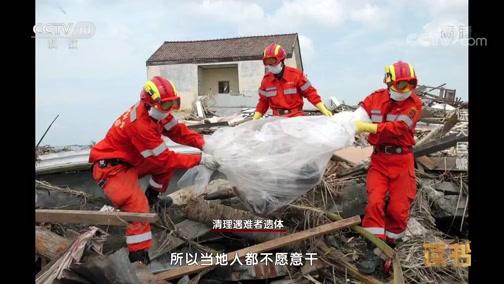 《读书》 20190111 张晓东 王一媛 《国际救援传奇》 惊天巨啸