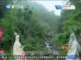 平辽王(24)斗阵来讲古 2019.01.17 - 厦门卫视 00:29:52
