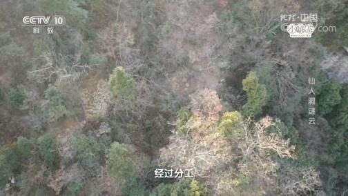 《地理·中国》天坑奇观·仙人洞谜云 00:24:07