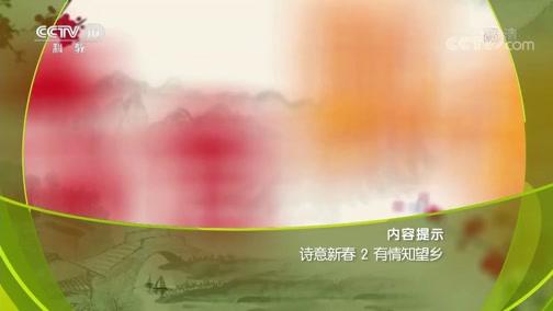 诗意新春 2 有情知望乡 百家讲坛 2019.02.05 - 中央电视台 00:38:20