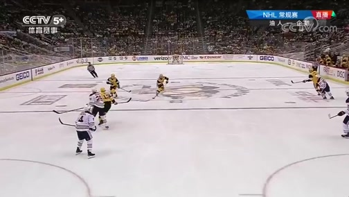 [NHL]常规赛:埃德蒙顿油人VS匹兹堡企鹅 第三节