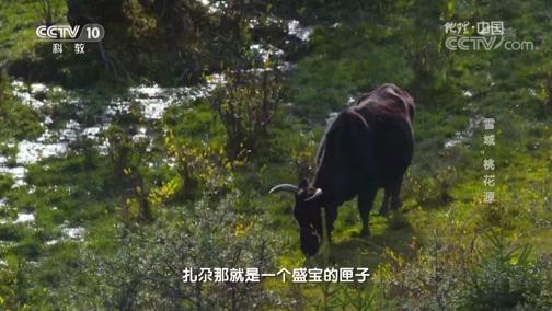 """《地理中国》 奇居胜境·雪域""""桃花源"""" 00:24:06"""
