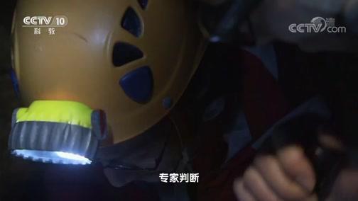 《地理中国》龙塘幽洞 00:24:05