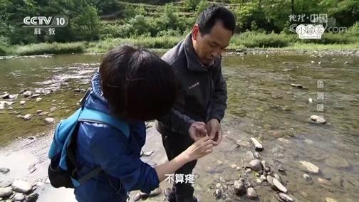 《地理中国》 鱼洞谜团 00:24:16